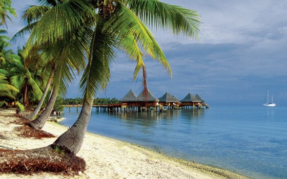 Rangiroa, in the Tuamotus, is a port of call for the Paul Gauguin and a world-class scuba destination.