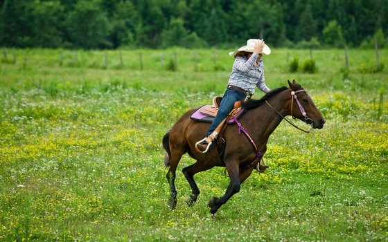 Horseback riding is a path to living in the moment.