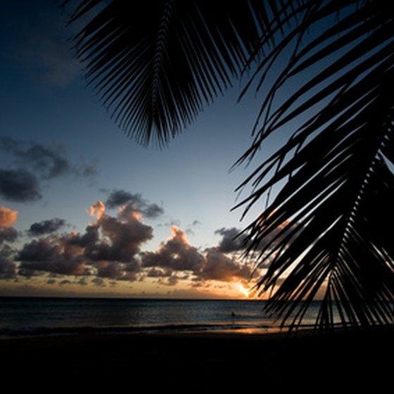 Palm trees and sunsets are just two of the Caribbean's many appealing aspects.