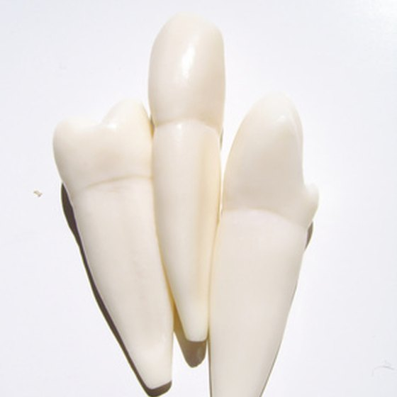 Flippers are partial dentures designed to replace missing teeth.