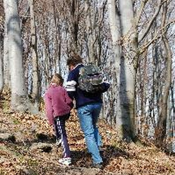 Hiking together encourages children to exercise and explore.