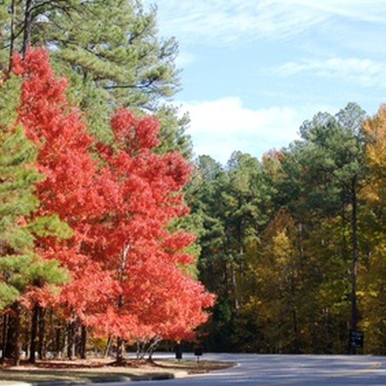 Fall foliage draws visitors to North Carolina's lakes.