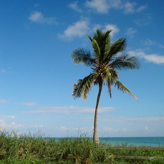 RVers in Florida enjoy white sandy beaches and lush tropical forests near Interstate 10.