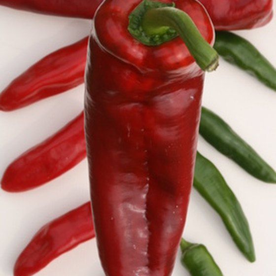 Hatch celebrates the chile in both its red and green forms.