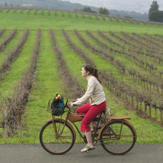Wine Country Bikes California Bike Tours And Bicycle