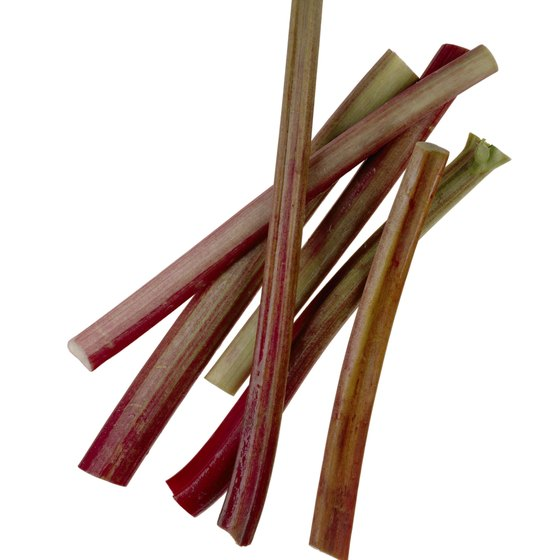 Blanching rhubarb helps retain its color and flavor.