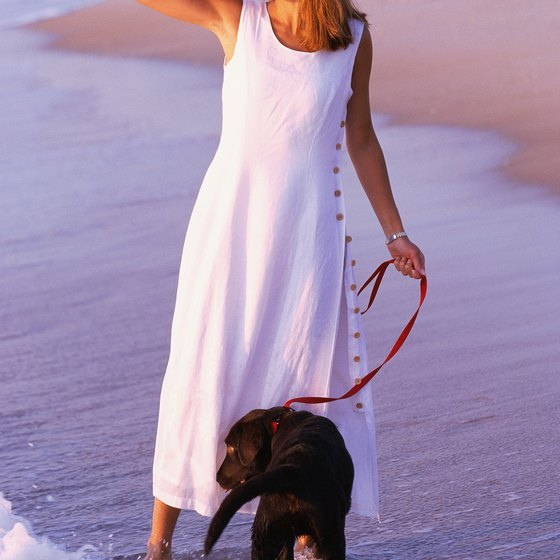 Leashed dogs are allowed on the beach 24/7 post-Labor Day to April 30.
