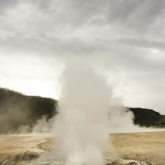Yellowstone National Park has the largest amount of geyers in the world.