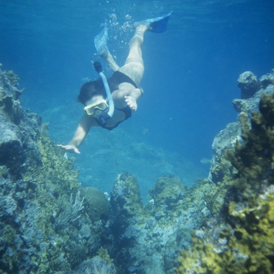 The coves of Majorca are ideal for snorkeling.