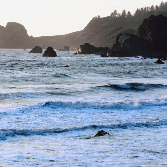 The chilly waters off Crescent City attract more surfers than swimmers.