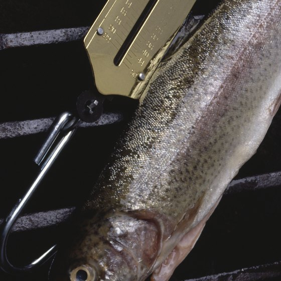You can catch trout at cold-water lakes near McNary.