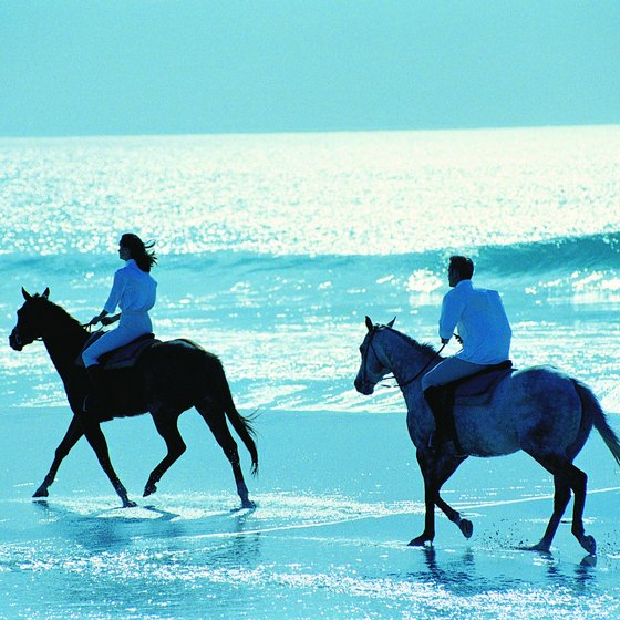 Riding at the water's edge is one of the delights of horsebacking on the coast.