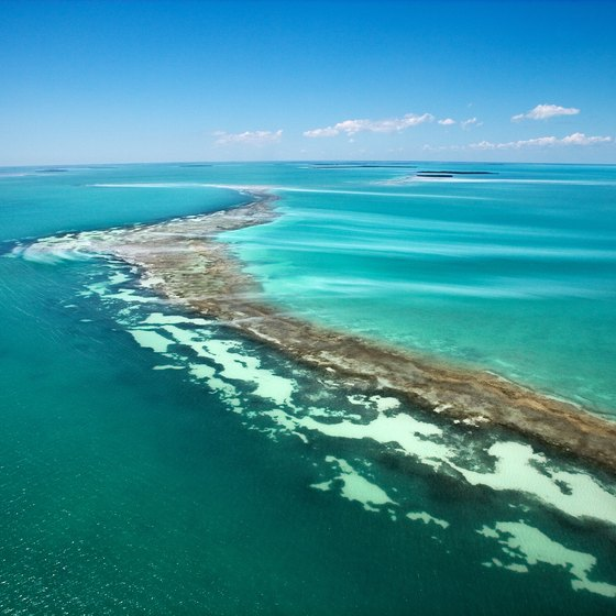 The calm, blue waters of the Florida Keys make dinner cruises a special attraction.
