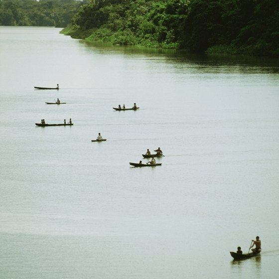 The Amazon River flows thousands of miles through the enormous Amazon Basin.