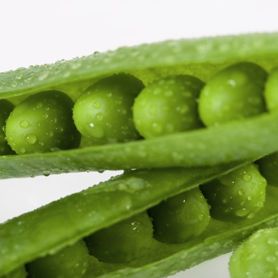 Sugar snap peas contain vitamin C to maintain your immune system.
