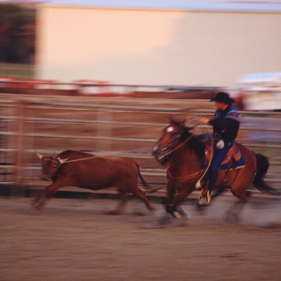Hold your breath as cowboys wrangle and ride at the San Antonio Stock Show & Rodeo.