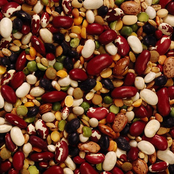 Beans contain protein and fiber for your small, frequent meals.