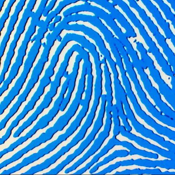 Create a digital image of your fingerprint with a fingerprint scanner.