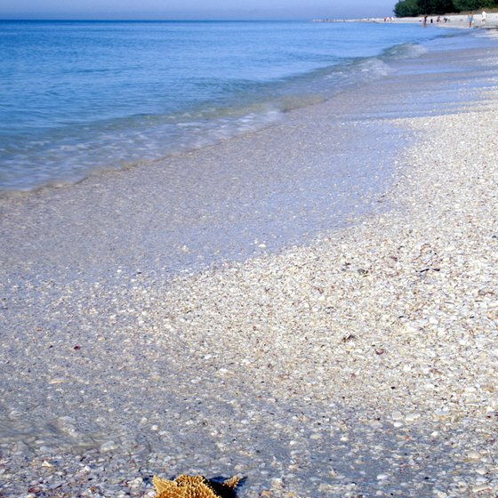Explore white sand beaches on Sanibel Island.