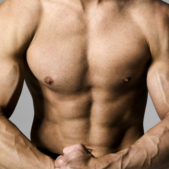 The chest, arms and abs are among the main muscles of the torso.