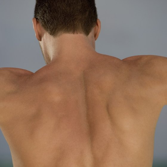 Target the lower trapezius by drawing the shoulder blades back and keeping your arms straight.