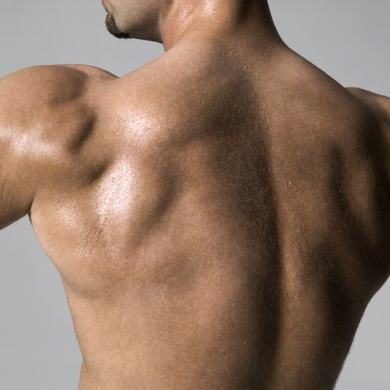 The rhomboids are covered by the middle trapezius muscle.