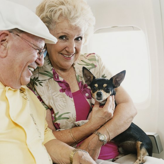 Airlines set their own rules about allowing small pets in the passenger cabin.