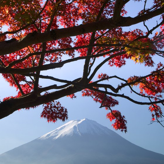 Mount Fuji stands 3,776 meters above sea level.