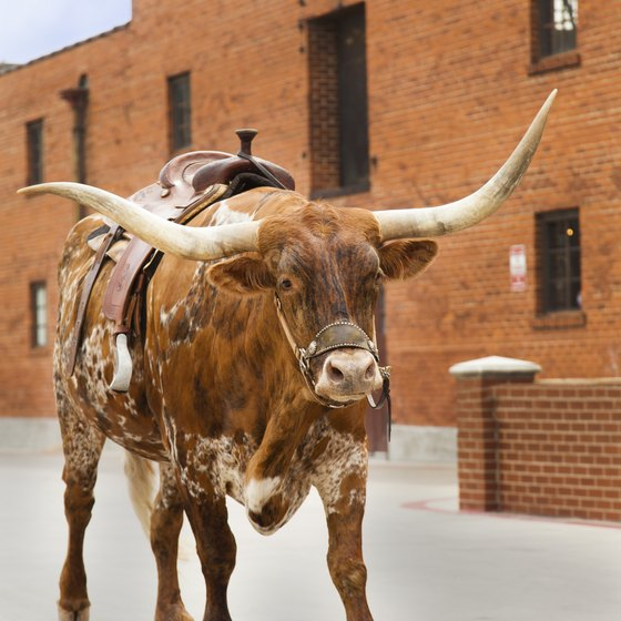 The historic Fort Worth Stockyards is one of the stops on the Grapevine Vintage Railroad.
