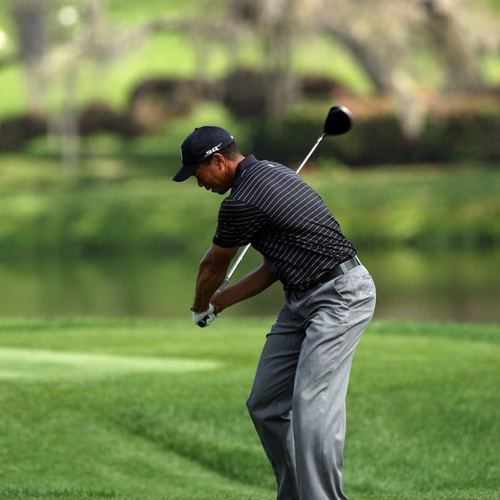 With his hips already rotating to his left, Tiger Woods brings the club forward during his downswing.