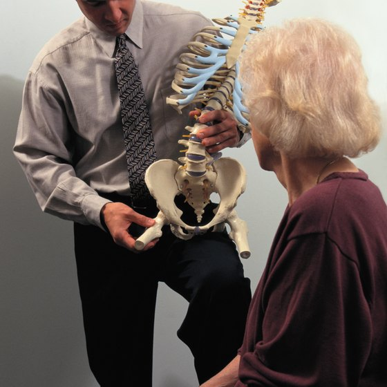 The hip joint is made up of the pelvic bone and the femur.