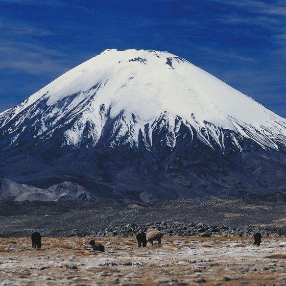 Parinacota is one of hundreds of volcanoes that emerge from the Chilean landscape.