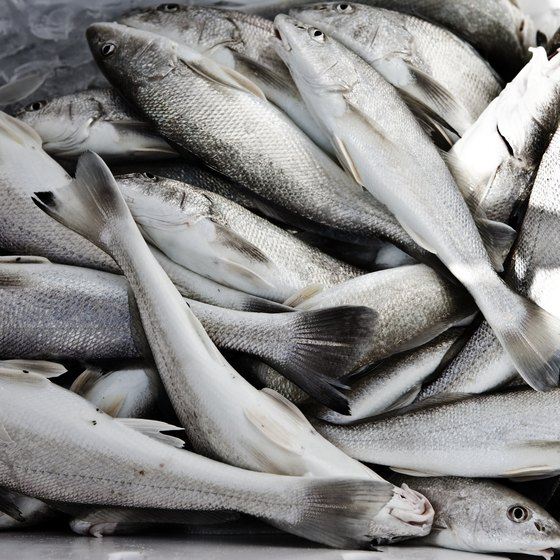 Different types of fish have varying levels of omega-3.