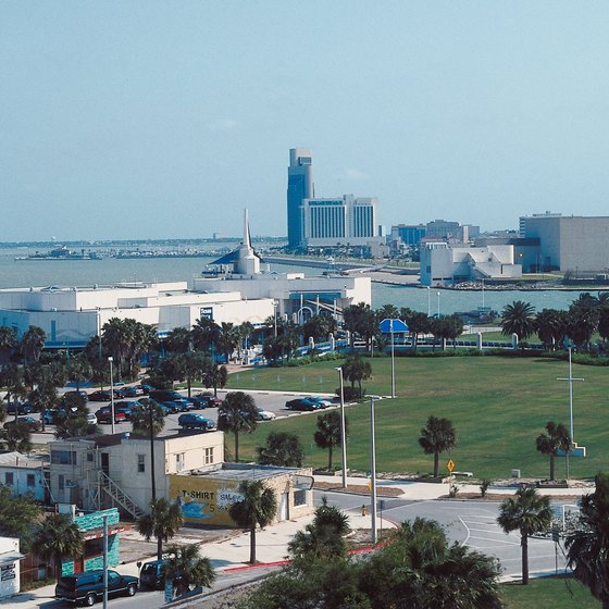 Palm trees and beaches are two of the main attractions in Galveston.