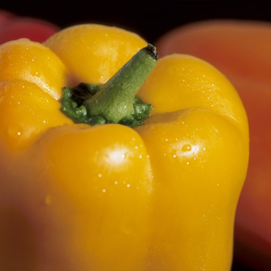 Bell peppers are rich in some healthy nutrients.