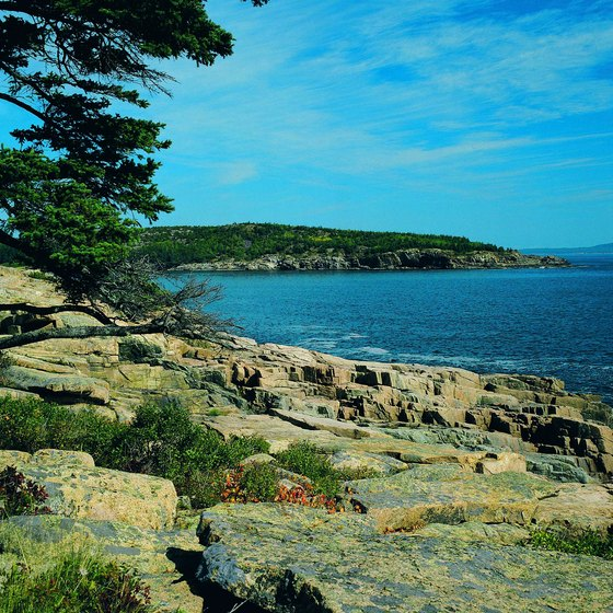 Acadia National Park has miles of Atlantic Ocean shoreline.