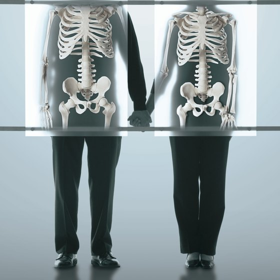 Bones make up a large percentage of your lean body weight.