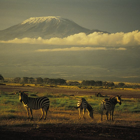 Mount Kilimanjaro, which looms over game-rich plains, is Africa's highest mountain.