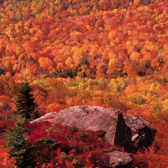Vivid autumn colors line the Blue Ridge Parkway in North Carolina.