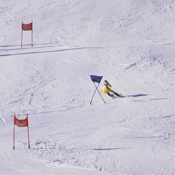 Ski racers train on and off the snow.