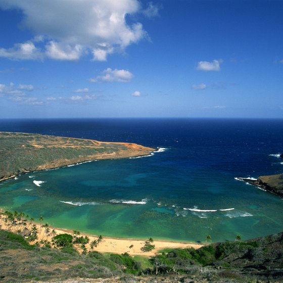 Hanauma Bay, a top snorkeling destination on Oahu, is ideal for beginners.