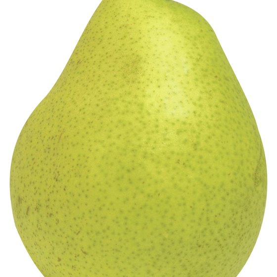 Pear-shaped bodies tend to gain weight in the thighs.
