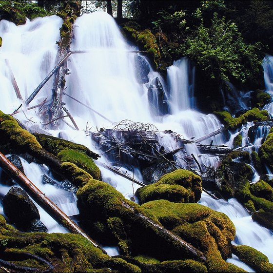 Waterfalls in Umpqua National Forest.