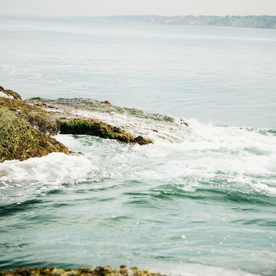 San Diego's shoreline ranges from sandy beaches to rocky reef formations.