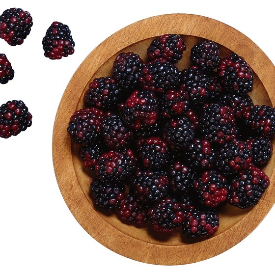 Boysenberries provide fiber, antioxidants and nutrients.