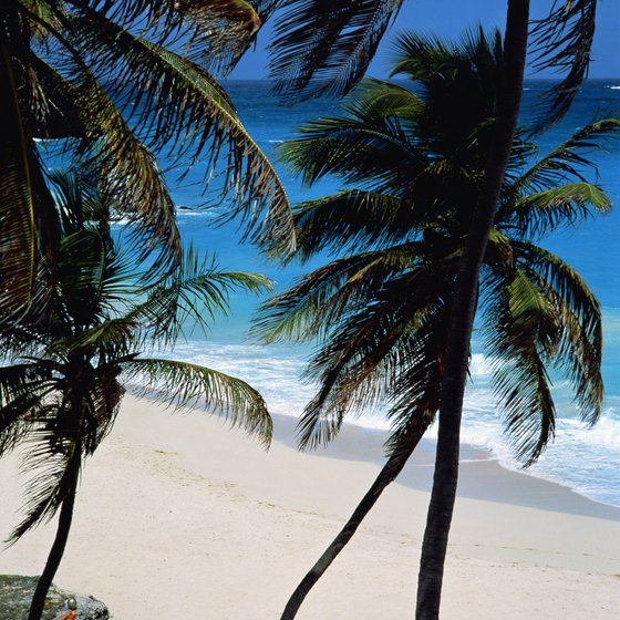 Barbados is a sovereign island in the Lesser Netherland Antilles.