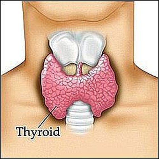 Check Your Thyroid Gland
