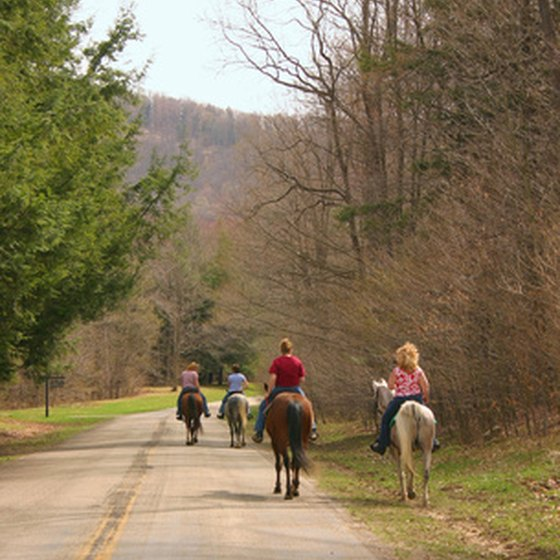 There are many opportunities to horseback ride in Michigan.