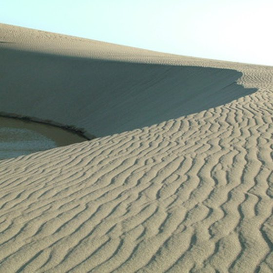 Campgrounds near Sheffield, Texas include the sand dunes at Monahans Sandhills State Park.