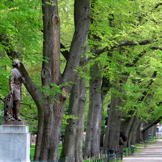 The historic Freedom Trail begins at the Boston Common and Public Garden.